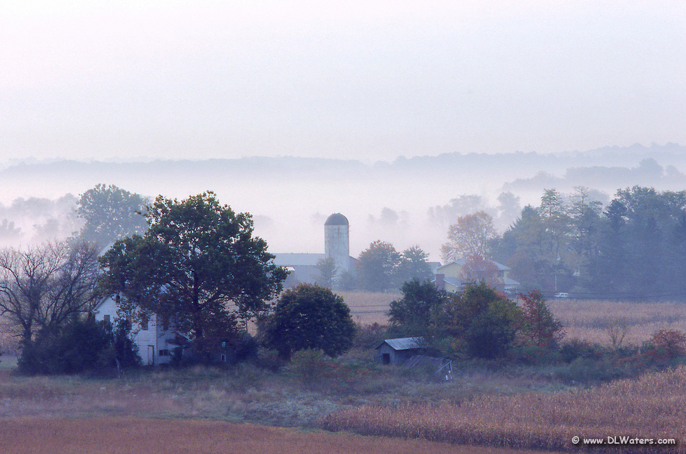 Country farm in the fog.