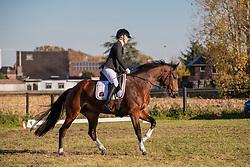 Van Mieghem Hilde, BEL, Ona van't Veldeken<br /> Eventing Sint Gillis Waas 2019<br /> © Hippo Foto - Dirk Caremans<br /> 10/11/2019