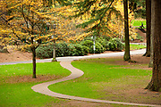 Serpentine path and fall colors, Mount Tabor Park, Portland, Oregon, USA