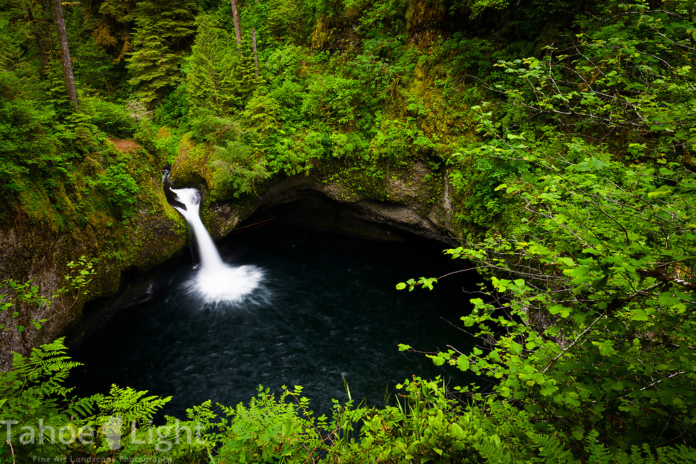 Punchbowl Falls on the Eagle Creek Trail along the Columbia River Gorge in Oregon. This is a spectacular waterfall hike going past 7 falls in nearly as many miles. The lush greenery and waterfalls of the Pacific Northwest are a must visit.