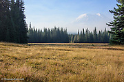 Mt Adams begins to show through the disipating smoke and morning fog. Muddy Meadows takes on a yellow-brown cast as fall approaches.