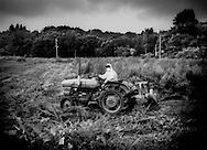 Farmland irradiated after the March 2011 meltdown at a Fukushima Daiichi Nuclear Power Plant built to satisfy the energy consumption needs for millions people living hundreds kilometers away in the Tokyo megalopolis.  Farmer, wearing a hazmat suit to protect against high rates of radiation, cuts weeds that have taken over his field so that he can then plough under the radiation-contaminated topsoil or even remove the topsoil altogether so that radiation levels in future crops can meet Japanese national standards one day in the future.  This land in the mountains northwest of crippled Fukushima Daiichi Nuclear Power plant will remain highly contaminated by fall-out for decades to come.  Iitate-Mura, Fukushima Prefecture, Japan.