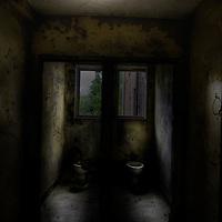 derelict toilet in Laybourne Grange mental asylum nurses accommodation block