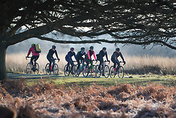 © Licensed to London News Pictures. 28/12/2017. London, UK. Cyclists ride through a frosty Richmond Park. Tonight is predicted to be the coldest night of the year with temperatures as low as minus 15 °C in some parts of the UK. Photo credit: Peter Macdiarmid/LNP