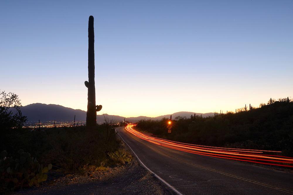 USA,Arizona,Tucson, Saguaro National Park, highway leading into Tucson from the west at dawn