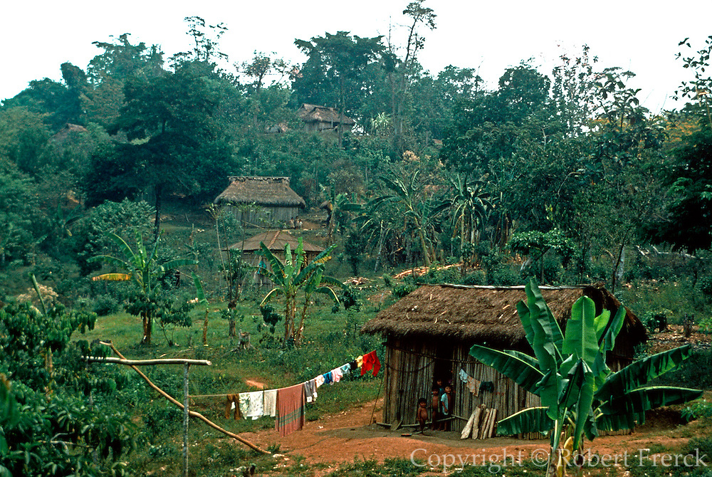 MEXICO, CHIAPAS, RURAL traditional thatched homes called palapas