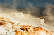 Canary Spring, Mammoth Hot Springs, Yellowstone National Park, Wyoming/Montana.