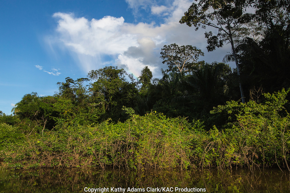 Inkaterra Amazonia; Lake Sandoval; Madre de Dios River; Peru; Tambopata National Reserve