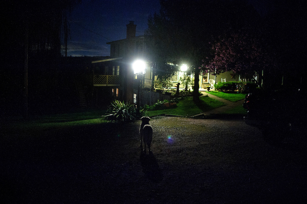 photo by Matt Roth.Wednesday, April 11, 2012..After sunset, Ron's dog Casey stands outside the Shriver family's farmhouse in Pleasant Valley, Maryland Wednesday, April 11, 2012. Casey will stay at the farmhouse. Ron says he's too old to travel across the country to Alaska...Ron Shriver grew up on a large farm house in Pleasant Valley, Maryland, a small township outside Westminster. After his lease was up, he moved back to his parent's home with his two children Rory and Miles, living temporarily in their basement before graduating from McDaniel College in May. After tossing his graduation cap, he and his children will drive cross country to meet up with his wife who has been working on her graduate degree in Alaska. ..Ron Shriver is a retired marine staff sergeant. He is also the first in his family to attend college, thanks to the New G.I. Bill. His wife, a fellow retired Marine, is finishing up graduate school in Alaska. After Ron gets his undergraduate degree from McDaniel College in May, he plans to drive to Alaska with is two children Rory, 6, and Miles, 5. For the move Ron got rid of most of his family's belongings, and after his lease was up, he and his children moved back into his parent's farmhouse.