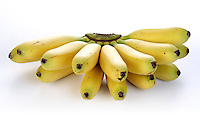 Studio shot of bananas on white background