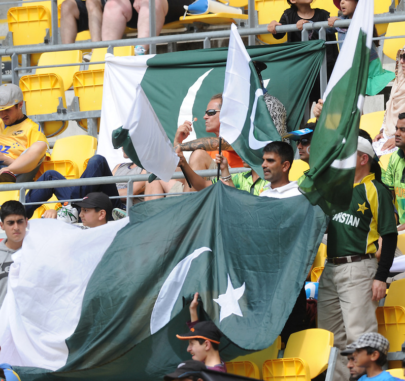 Pakistani fans against New Zealand in the 1st One Day International cricket match at Westpac Stadium, New Zealand, Saturday, January 31, 2015. Credit:SNPA / Ross Setford