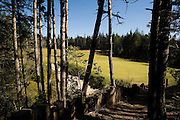 #13 green Bandon Trails, Bandon Dunes Golf Resort, Bandon Oregon