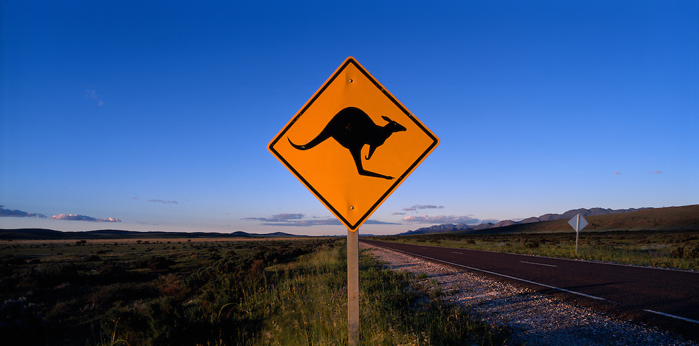 Australia, South Australia, Kangaroo Crossing sign along highway through Flinders Range south of Parachilna