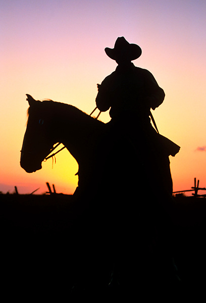silhouette of a cowboy riding a horse at sunset
