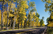 00409_Fall_Colors_Hwy_Flagstaff_AZ
