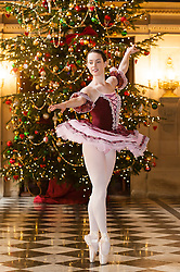 Chatsworth House Press Launch -  Alice Rathbone as the Sugar Plumb fairy in against the back drop of one of the Chatsworth House giant festive Christmas trees in Painted Hall <br />   04 October 2016<br />   Copyright Paul David Drabble<br />   www.pauldaviddrabble.photoshelter.com