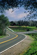 Country road through the Shenandoah Valley near Plymouth, Amador County, California