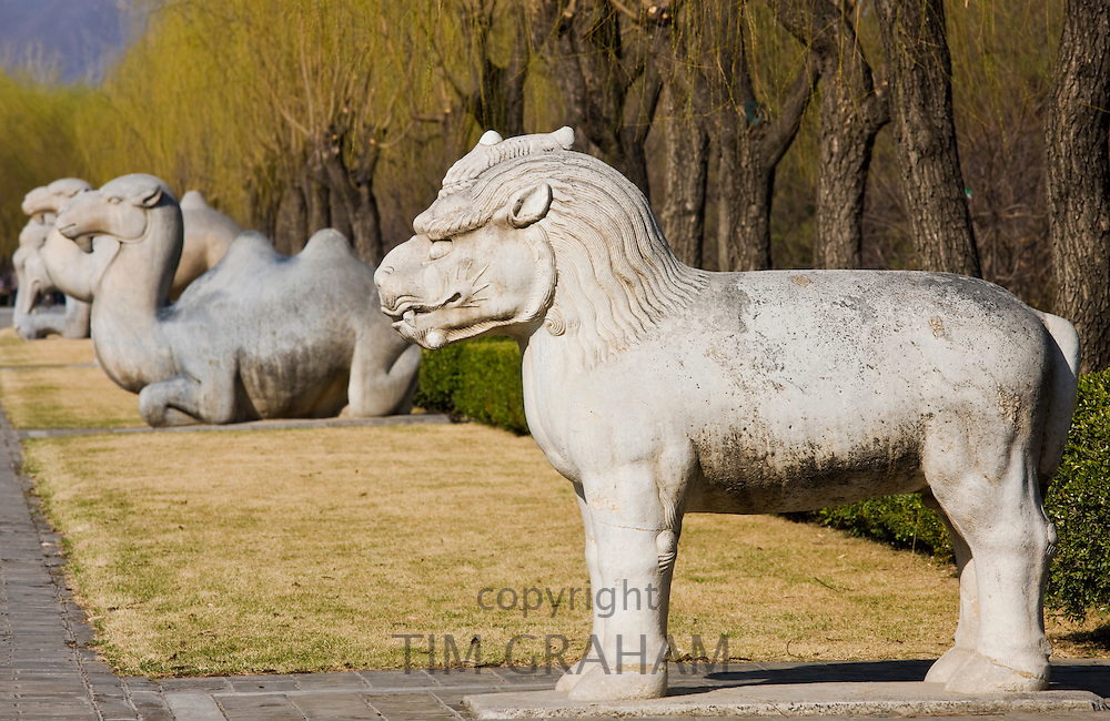 Statue of a standing Xiezi, mythical Chinese Unicorn, on Spirit Way at Ming Tombs site, Beijing, China