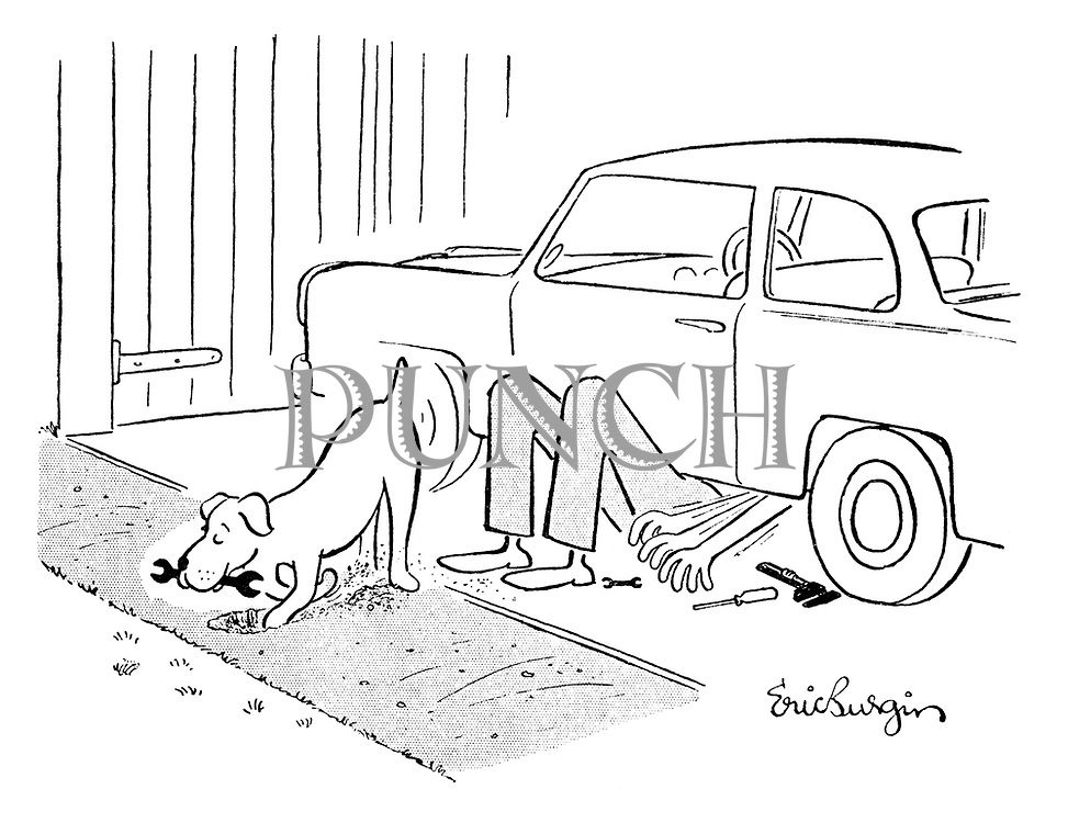 (Dog buries a spanner which its master needs to fix his car)