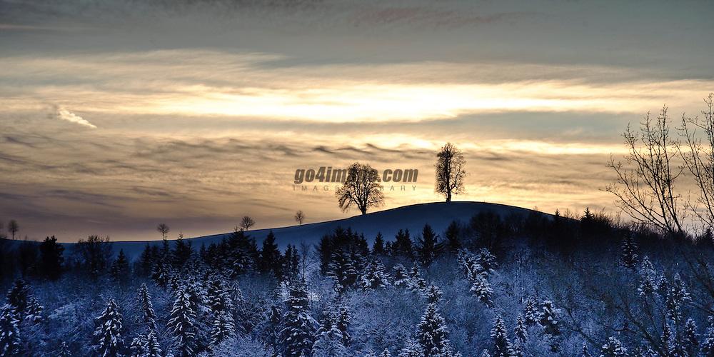 Winter Sunset on the Hirzel Switzerland