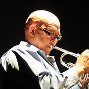 "Afternoon Rehearsal - Adalberto ""Trompetica"" Lara"