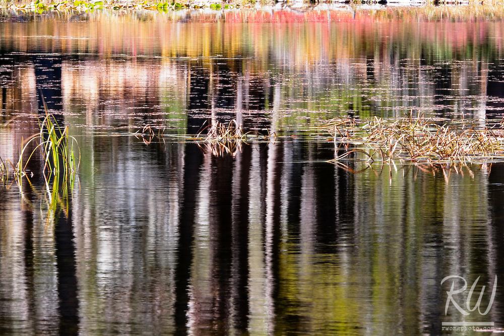 Siesta Lake Water Reflection Abstract / Tioga Pass, Yosemite National Park, California