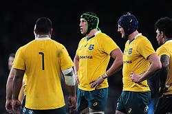 Adam Coleman of Australia looks on - Mandatory byline: Patrick Khachfe/JMP - 07966 386802 - 08/10/2016 - RUGBY UNION - Twickenham Stadium - London, England - Argentina v Australia - The Rugby Championship.