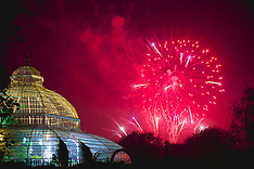 121105 Sefton Park Fireworks