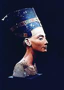 Nefertiti (14th century BC) Egyptian queen, consort of heretic king Akhenaton. Sculptured head found at Amarna 1912.  Berlin Museum
