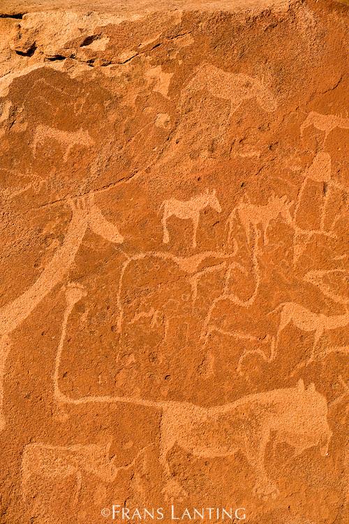 'Lion Man' rock art engraving, Twyfelfontein World Heritage Site, Uibasen Conservancy, Damaraland, Namibia