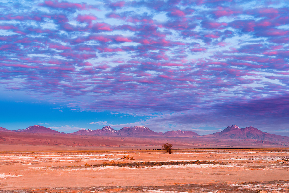 Mountains and volcanoes in the altiplano at the Atacama Desert in Chile at sunset