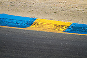 Tire marks are left on the edges of the track by IndyCars at the Indy Grand Prix of Sonoma at the Infineon Raceway in Sonoma, Calif., on Aug. 26, 2012.  Photo by Stan Olszewski/SOSKIphoto.