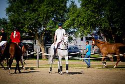 Fredricson Peder, SWE, Catch Me Not S<br /> Knokke Hippique 2019<br /> © Hippo Foto - Sharon Vandeput<br /> 30/06/19