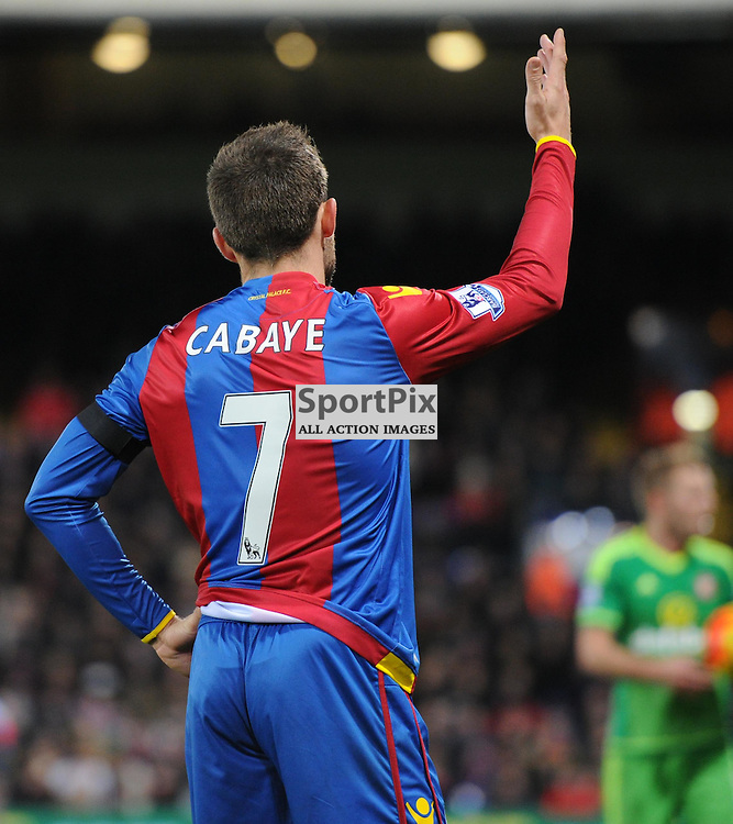 Crystal Palaces Yohan Cabaye wears a black armband after the paris attacks during Crystal Palaces clash with Sunderland in the Barclays Premier League at Selhurst Park