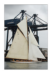 The Lady Anne, a 15 metre (95') Gaff Cutter built in 1912 sails under the cranes off Fairlie during the start on the first day's racing...This the largest gathering of classic yachts designed by William Fife returned to their birth place on the Clyde to participate in the 2nd Fife Regatta. 22 Yachts from around the world participated in the event which honoured the skills of Yacht Designer Wm Fife, and his yard in Fairlie, Scotland...FAO Picture Desk..Marc Turner / PFM Pictures