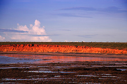 Afternoon light strikes the pindan cliffs at James Price Point on the Kimberley coast, north of Broome.