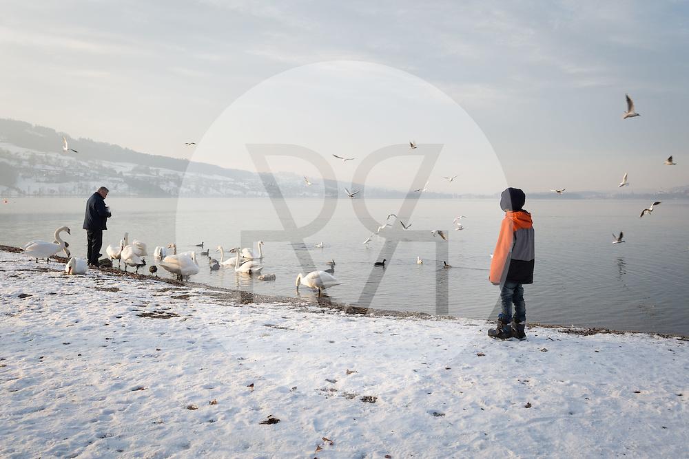 SCHWEIZ - MEISTERSCHWANDEN - Zwei Menschen füttern Wasservögel - 28. Januar 2017 © Raphael Hünerfauth - http://huenerfauth.ch