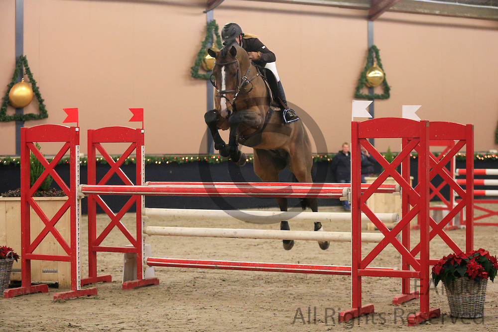 Angelique Hoorn - Crespo VDL<br /> KNHS/KWPN GMB Hengstencompetitie Roosendaal 2012<br /> © DigiShots