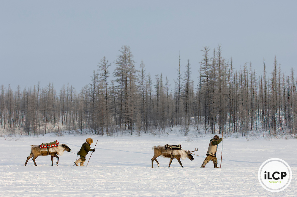An Evenki boy and young man lead their reindeer mounts across a frozen lake, Siberia, Russia.