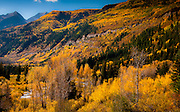The view from McClure Pass in the fall - beautiful color!