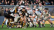 Wycombe, GREAT BRITAIN, Wasps' Mark ROBINSON is caught by Richard WIGGLESWORTH and frontal by, Flanker Neil BIGGS as he tries to break away from the scrum, during the Guinness Premiership match,  London Wasps vs Sale Sharks at Adam's Park Stadium, Bucks, on Sun 23.11.2008. [Photo, Peter Spurrier/Intersport-images]