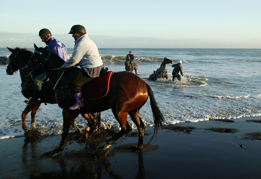Early morning track work for these racehorses included a run along New Plymouth's Fitzroy Beach and a rewarding swim at the end, mAY 25, 2005. One horse threw its rider in an unexpected dip for the rider in the winter surf. Credit:SNPA / Rob Tucker
