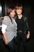 l to r: Free and Sylvia Rhone at The Vibe Magazine Presents Vsessions Live! Hosted by the Fabulous Toccara featuring Hal Linton, Suai and Ron Browz held at Joe's Pub on February 25, 2009 in NYC