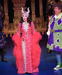 Snow White and the seven dwarfs<br /> at the New Wimbledon Theatre, London, Great Britain <br /> press photocall and rehearsal <br /> 6th December 2012 <br /> <br /> Priscilla Presley as Wicked Queen <br /> <br /> Warwick Davis as Prof<br /> <br /> James Austen-Murray as Prince<br /> <br /> Lizzie Jay-Hughes as Snow White<br /> <br /> Jarred Christmas as Henchman<br /> <br /> Lee Carroll as Jester<br /> <br /> Peter Burroughs as Grumbly <br /> <br /> Hayley Burroughs as Blusher<br /> <br /> Darius Ashard as Snoozy<br /> <br /> Danny Blackner as Loopy<br /> <br /> Phil Holden as Sniffley<br /> <br /> Peter Bonner as Cheeky <br />   <br /> <br /> <br /> Photograph by Elliott Franks