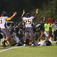 Lauren Wood | Buy at photos.djournal.com<br /> Itawamba players throw their hands in the air after scoring a touchdown during Friday night's game at Pontotoc.
