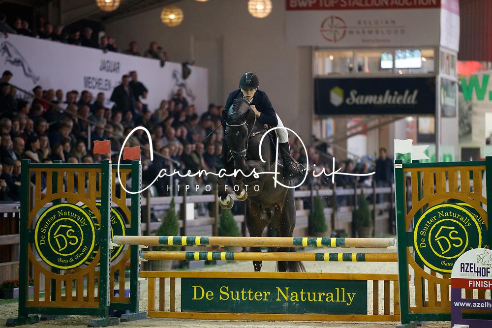 Goossens Dries, BEL, Diadition<br /> Pavo hengstencompetitie 4 jaar<br /> Hengstenkeuring BWP - Lier 2018<br /> © Dirk Caremans<br /> 21/01/2018