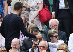 Image ©Licensed to i-Images Picture Agency. 26/06/2014. London, United Kingdom. Liam Payne and Niall Horan from One Direction in the Centre Court  on day four of the Wimbledon Tennis Championships. Picture by Stephen Lock / i-Images