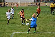 BU08 - CHEETAHS FC BU8 v HARBOR BU8 JR ACADEMY GREEN