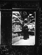 23/04/1955 <br /> 04/23/1955<br /> 23 April 1955<br /> <br /> Special for Miss Evelyn Halpin - Copy Negative