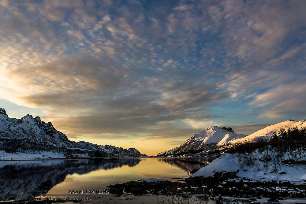 Mountain relection at sunset on a norvegian fjord. Lofotens Islands, Norway.